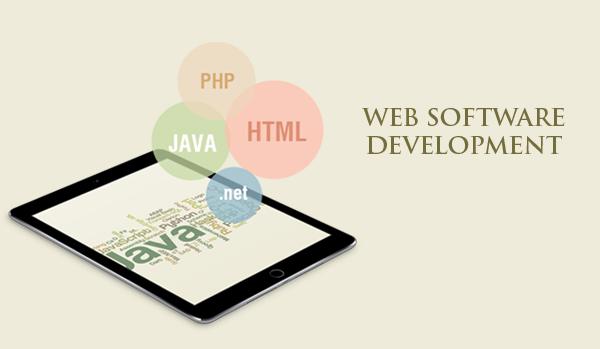 web software (1)